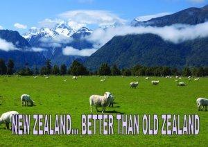 Decentralization Blog - New School